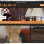 Discount Celine Goddess