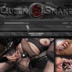 Queen Snake Discount Today