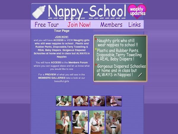 Nappyschool Daily Accounts