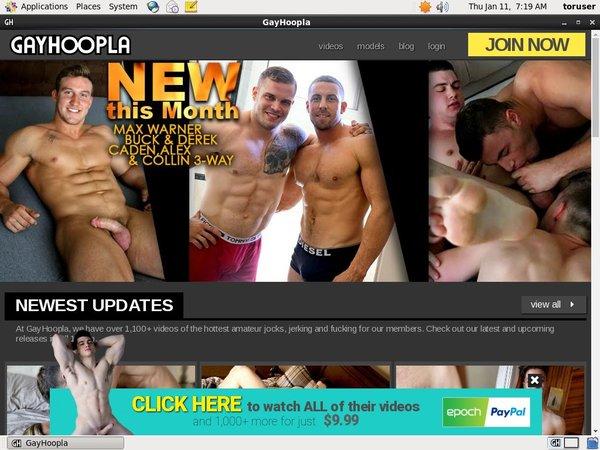 Gayhoopla Free Trial Member